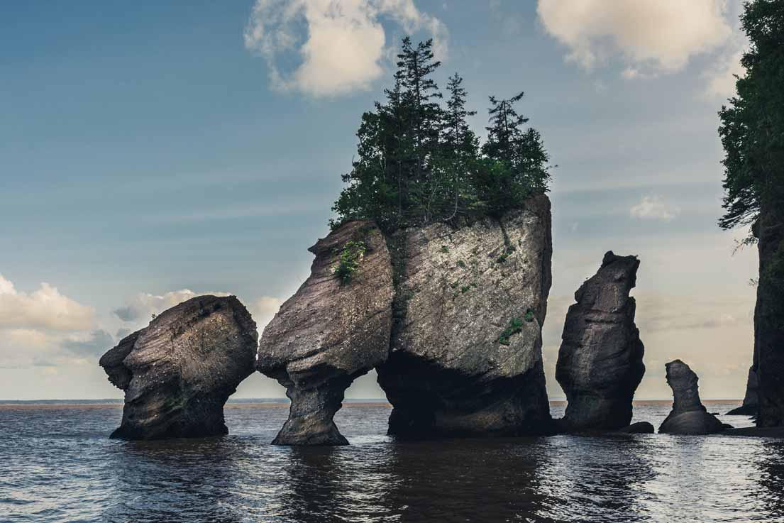 Beach in Campbell River, a travel destination in Canada.