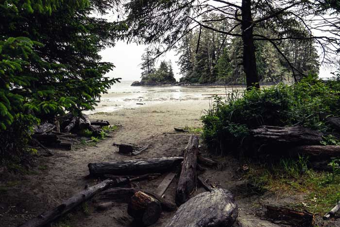 Pacific Rim National Park on Vancouver Island