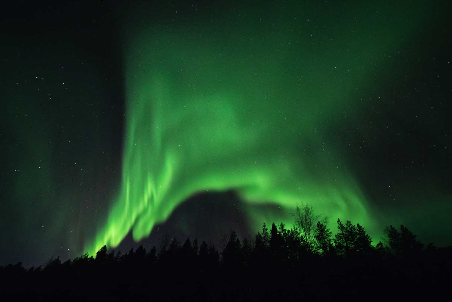 Northern Lights are easy to see in Yukon Canada