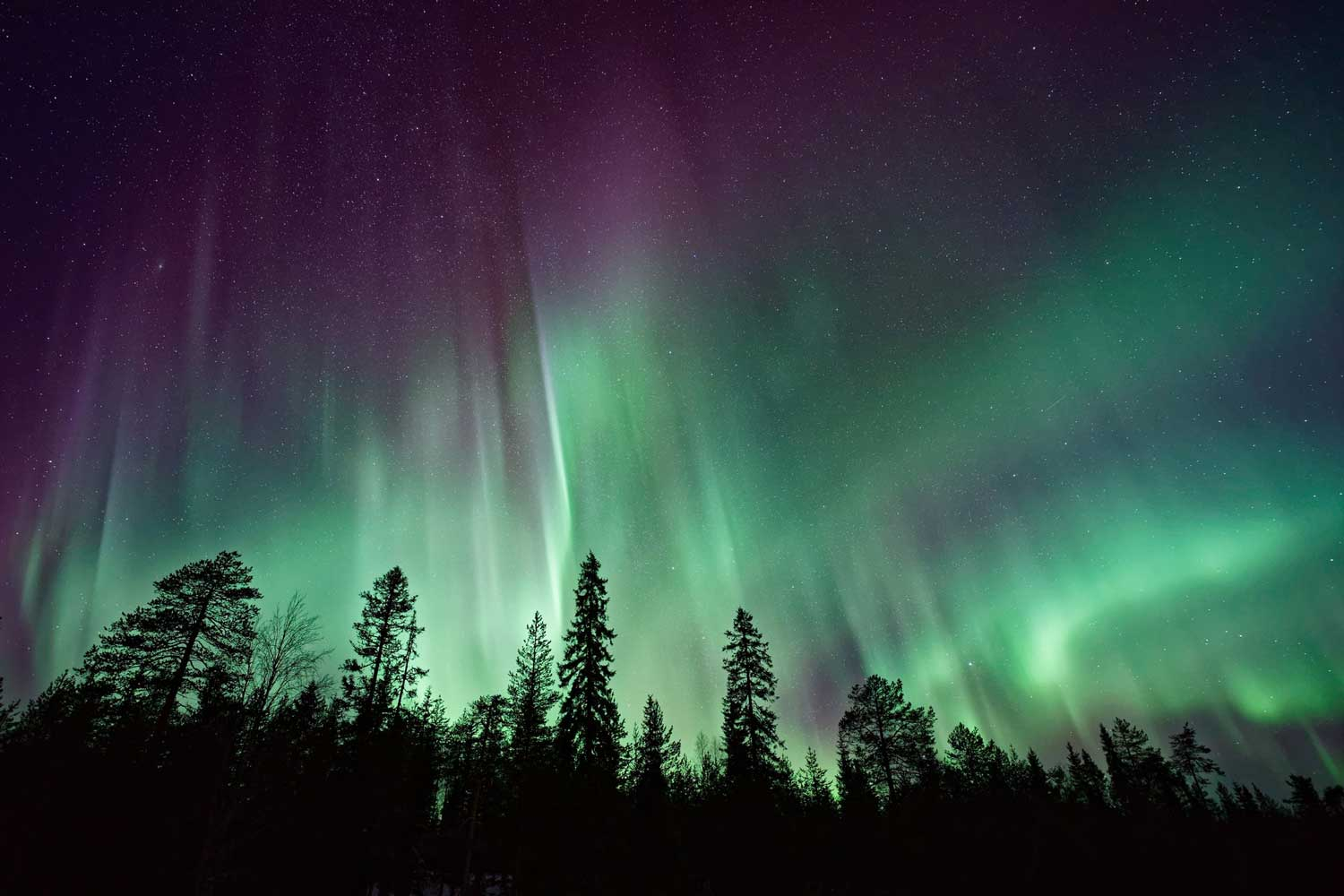 Yukon is where to see the northern lights in Canada